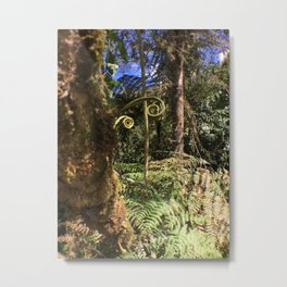 The Ferns of the Cloud Forest Metal Print