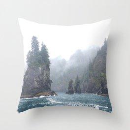 Kenai Fjords Pillars - 1 Throw Pillow