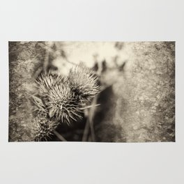Beautiful thistle growing wild and sepia texture Rug