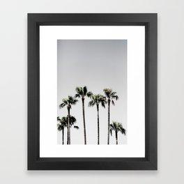 Palm Trees 5 Framed Art Print