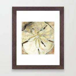 Dollar in the Sand Framed Art Print
