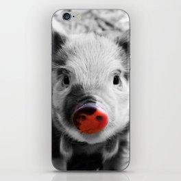 BW splash sweet piglet iPhone Skin