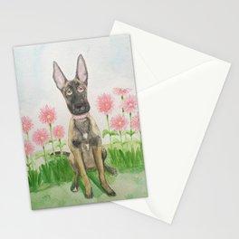 Belgian Shepherd Malinois Stationery Cards