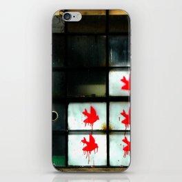 My dear Window pane... iPhone Skin