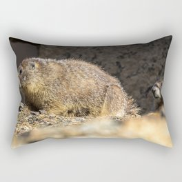 Two Marmots At Smith Rock Rectangular Pillow