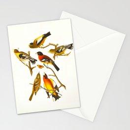 Evening grosbeak John James Audubon Vintage Birds Of America Illustration Stationery Cards