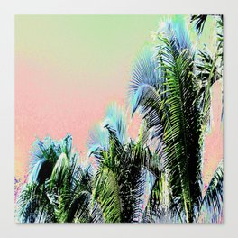 PASTEL PALMS Canvas Print