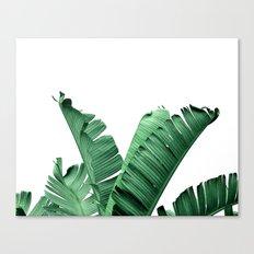 TROPIC - BANANA LEAF Canvas Print