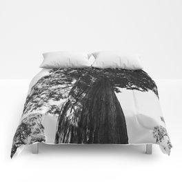 Sequoia National Park VI Comforters