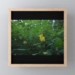 Do Not Touch Me Framed Mini Art Print