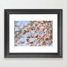 Spring Whispers Framed Art Print