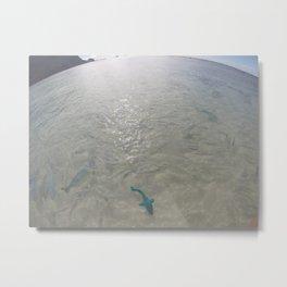 Rainbow Fish LHI Metal Print