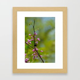 Bumble and Inch by Teresa Thompson Framed Art Print