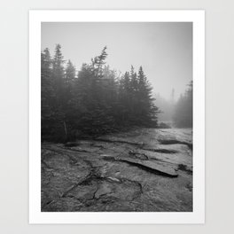 drizzly day Art Print