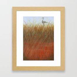 Autumn Marsh Framed Art Print