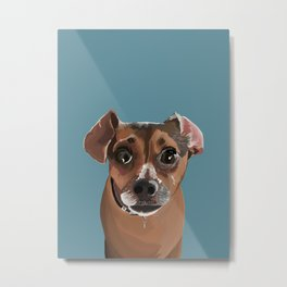 Another Cute Pup : Miss Molly Metal Print
