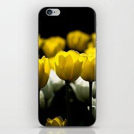 Tulips Yellow And White iPhone Skin