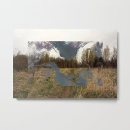 In the Flat Field Metal Print