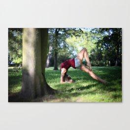 Ballerina Project VIII Canvas Print