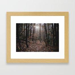 North Carolina Fall Framed Art Print
