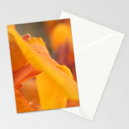 Mary Ann Stationery Cards