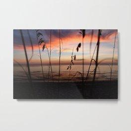 Sunset Sea Grass Metal Print