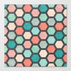 Hexagon 1 Canvas Print