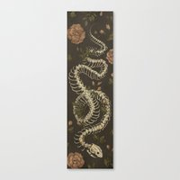 snake Canvas Prints featuring Snake Skeleton by Jessica Roux