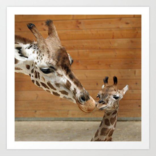 Giraffe 002 Art Print