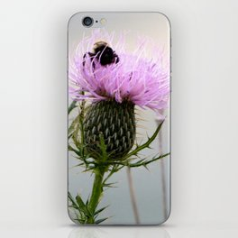 Bee on a Thistle iPhone Skin