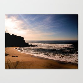 Salvation freely mined Canvas Print