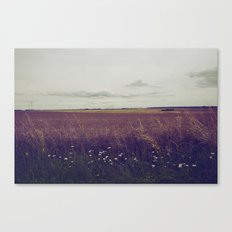 Autumn Field III Canvas Print