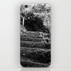 The Woodland Stair iPhone & iPod Skin