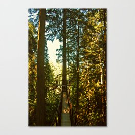 Treetop Adventure  Canvas Print