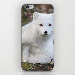 Polar Fox by Anne Elisabeth iPhone Skin