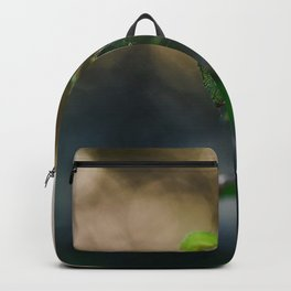 Dreamy Morning. Backpack