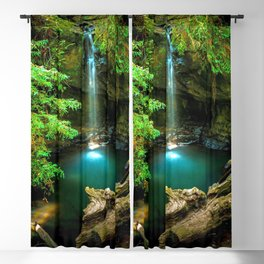 Big Basin Redwoods State Park California United States Ultra HD Blackout Curtain