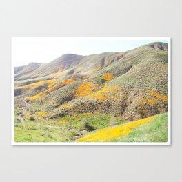 Poppy Super Bloom Vintage Fade Canvas Print