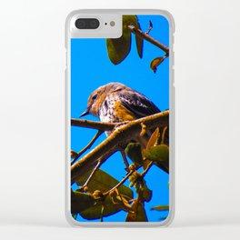 South Carolina Wildlife Clear iPhone Case