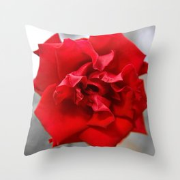 Rose in Red.... Throw Pillow