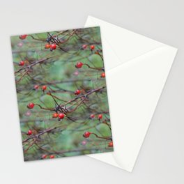 Small rosehips on bare branches Stationery Cards