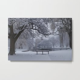 Snowy Tree The Public Garden Boston MA Bench Black and White Metal Print