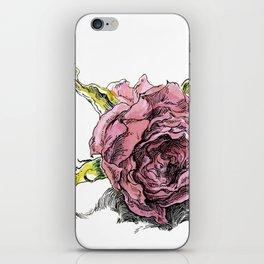 dried rose iPhone Skin