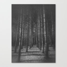 Into the woods... Canvas Print