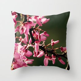 Cercis canadensis 'Forest Pansy' Throw Pillow