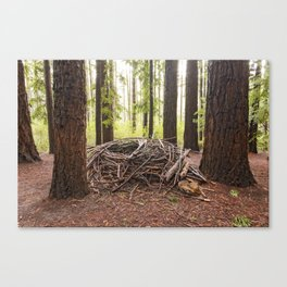 Wild and Woven Canvas Print