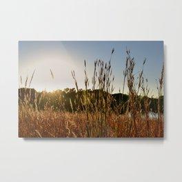 Fall Sun Flare Metal Print