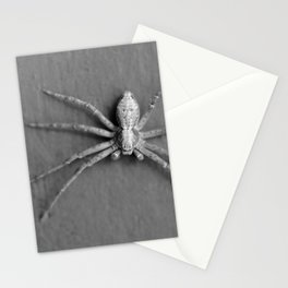 Spider black and white Stationery Cards