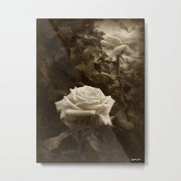 Pink Roses in Anzures 5 Antiqued Metal Print