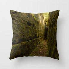 Nature's Secret Throw Pillow